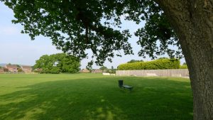 image of love lane playing fields