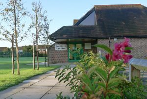 New Activities come to the Avenue Pavilion