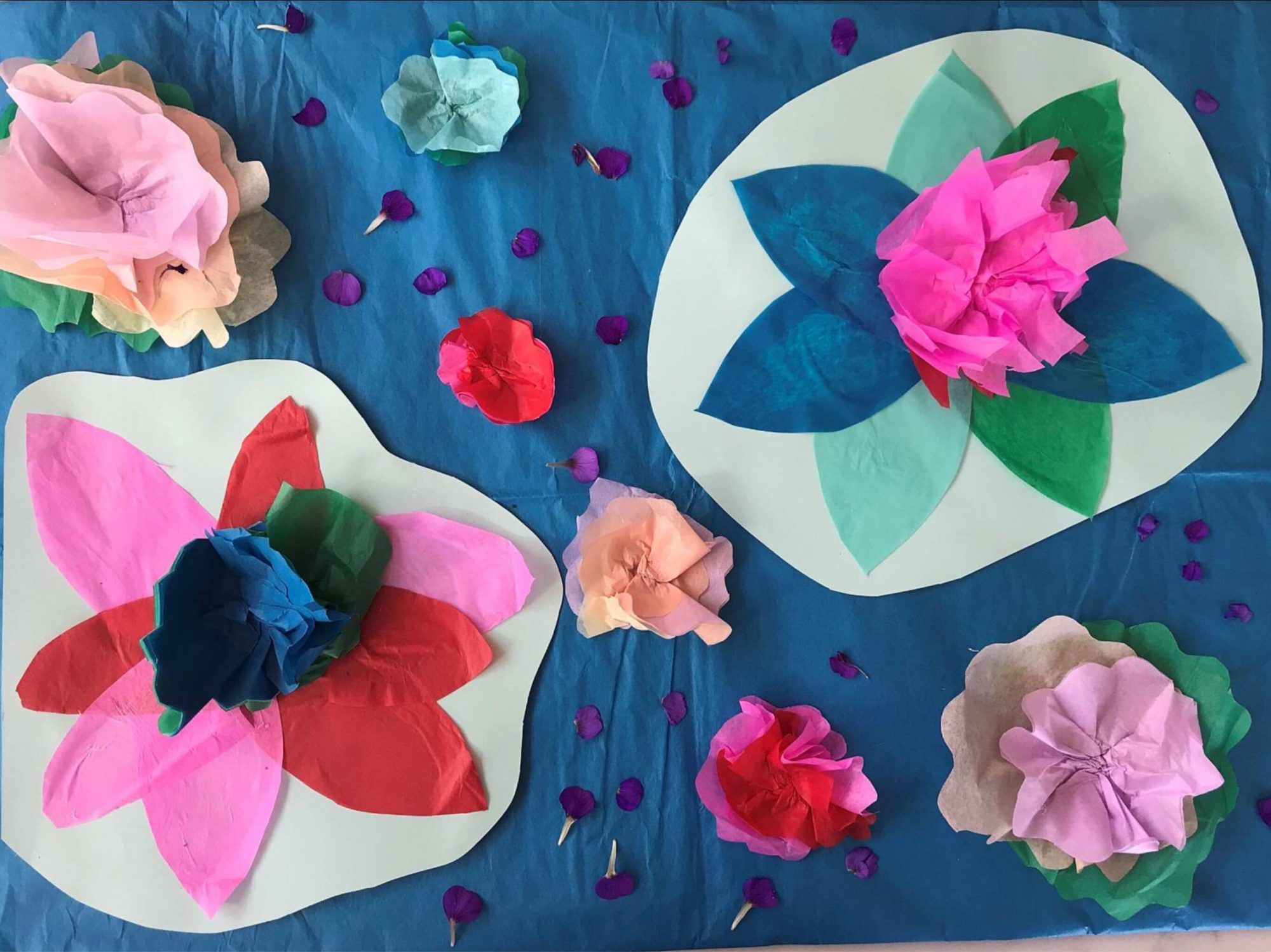 colourful tissue paper flowers on sugar paper lilly pads