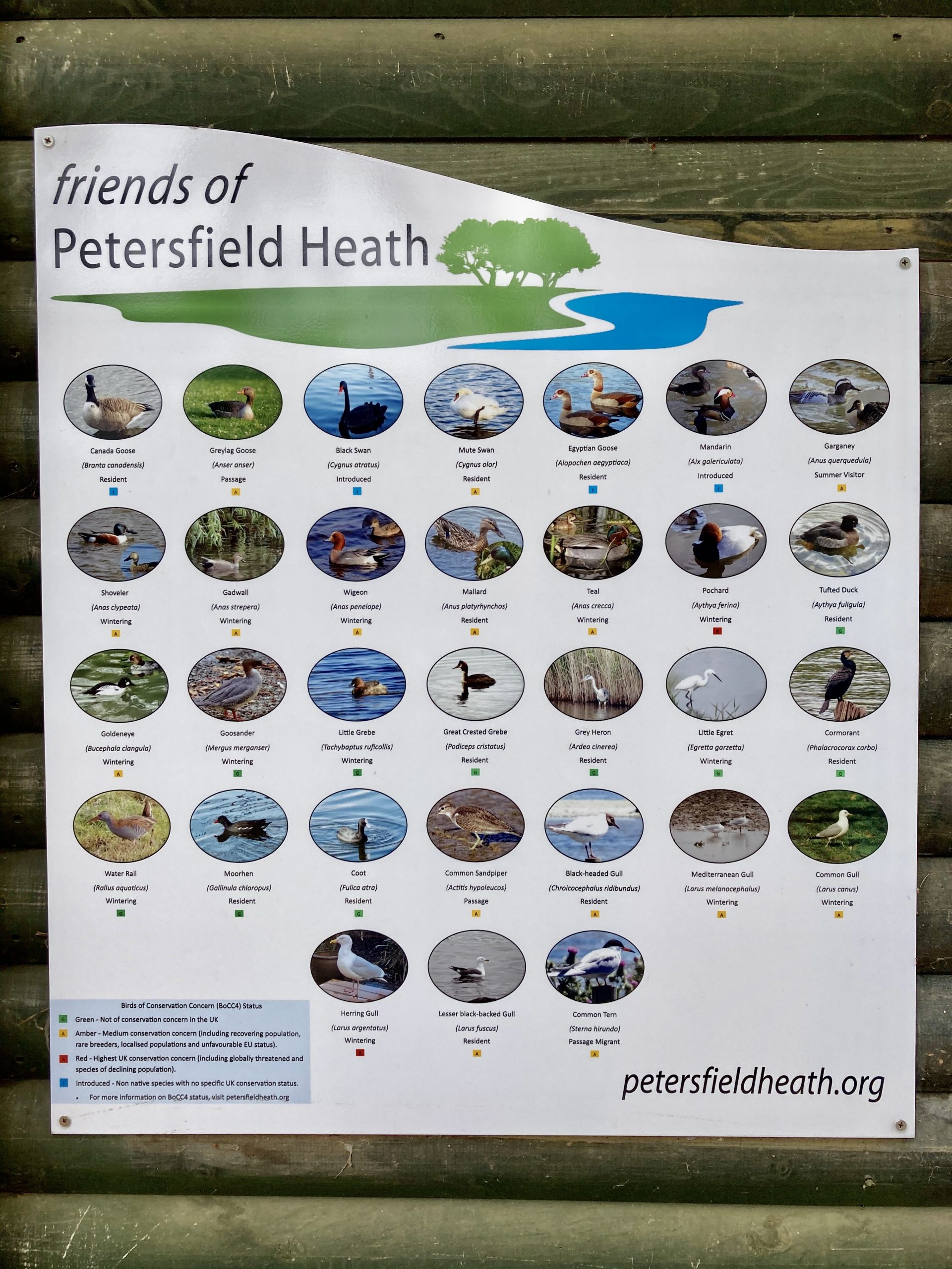 friends of petersfield heath bird identification board