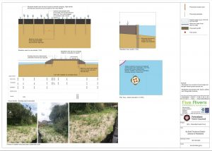 technical details about the island and reed beds used in the pond stabilisation works